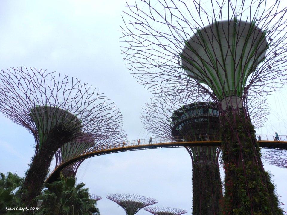 wisata singapura 24
