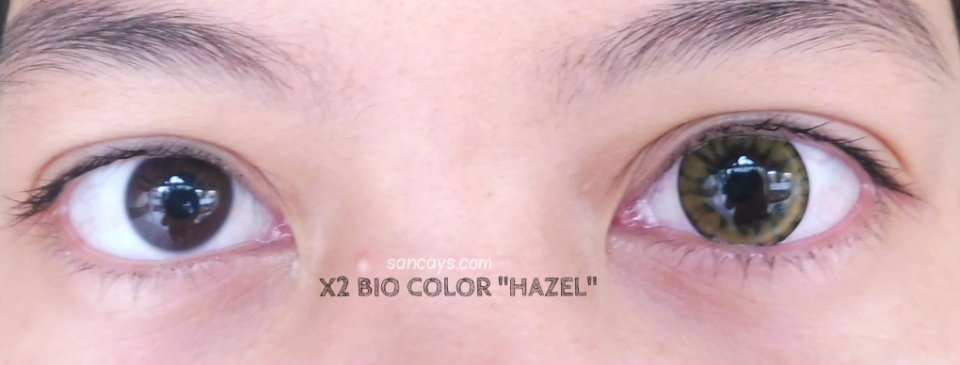 x2 bio color hazel 10